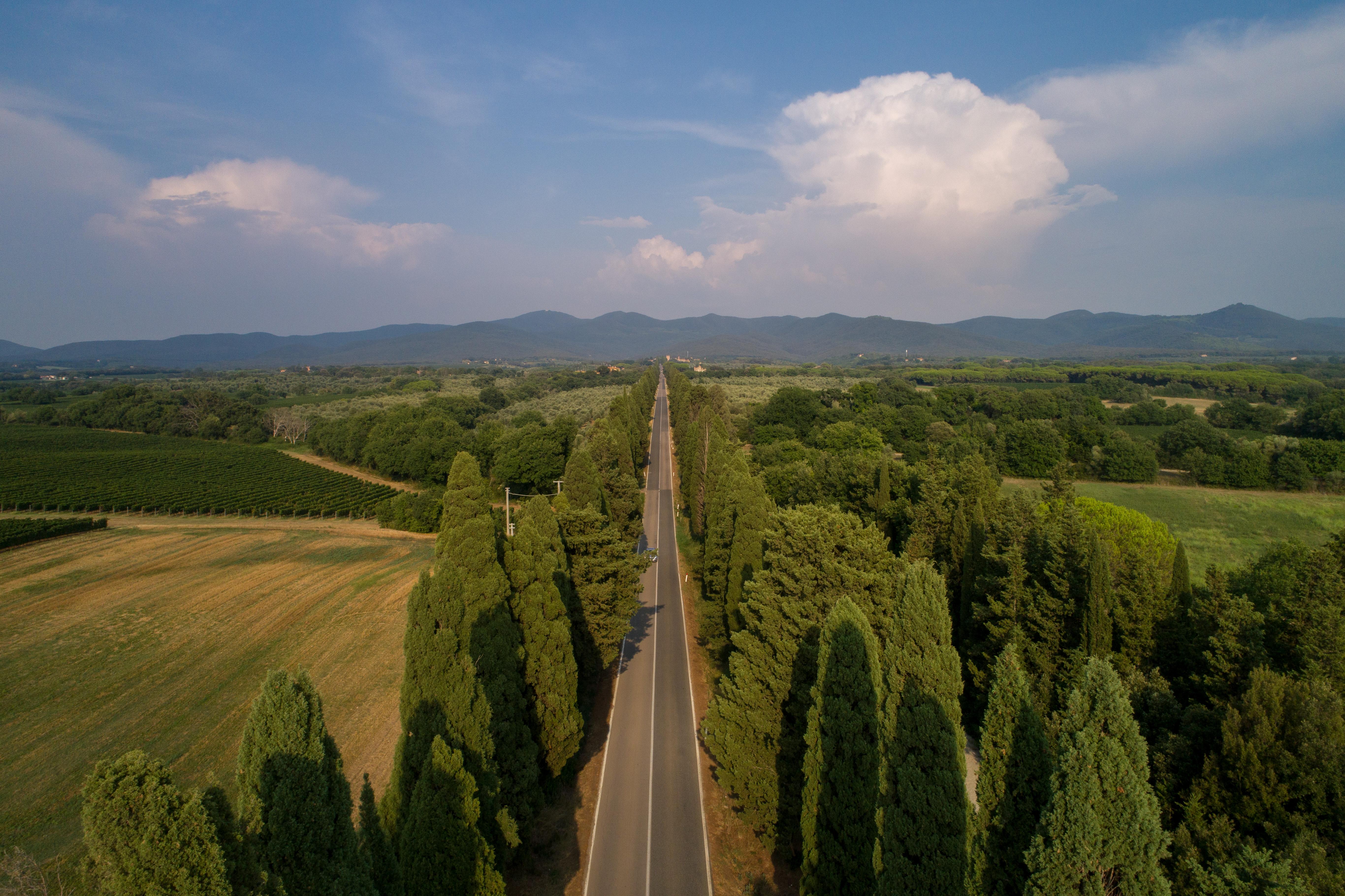 Viale Cipressi